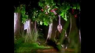 Julio Iglesias - Milonga (HD)