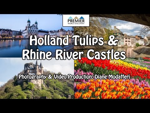 Holland Tulips & Rhine River Castles