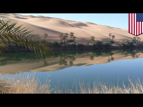 Wind and solar farms could transform Sahara Desert - TomoNews