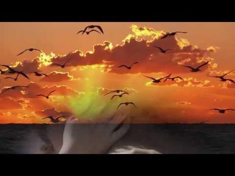 Tutto in un abbraccio - Claudio Baglioni (video con testo)