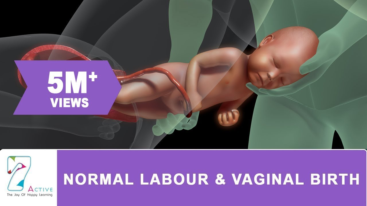 AMAZING NORMAL LABOUR & VAGINAL BIRTH