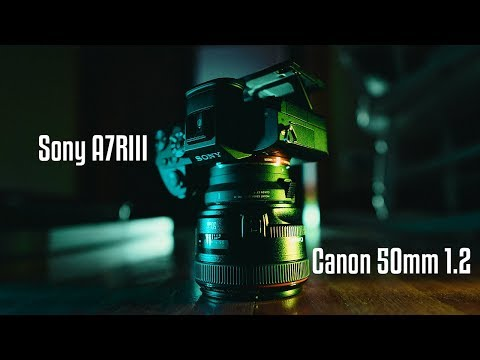 the TRUTH about using CANON lenses on SONY cameras!