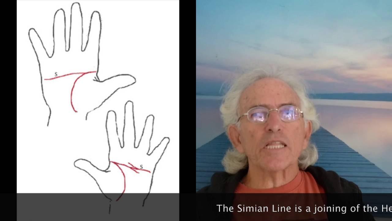 Simian line palmistry tony blair tony bliar - Simian Line Palmistry Tony Blair Tony Bliar 3