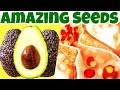 Avocado Seeds [Amazing Unknown Health Benefits] You Have to Know. Why You MUST EAT Avocado Seeds?