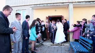Свадебный клип г. Губкин 16.03.2013