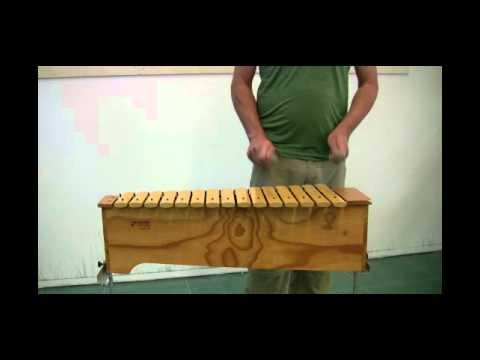 Das Xylofon