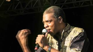 Femi Kuti - Africa For Africa - Live @ WOMAD Charlton Park 2012