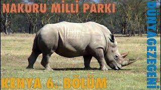 Vahşi Gergedan Gördük, Kenya 6. Bölüm: Nakuru Milli Parkı , Dünya Gezegeni ,  DG