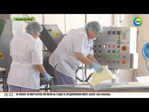 В Костроме наладили производство итальянских сыров