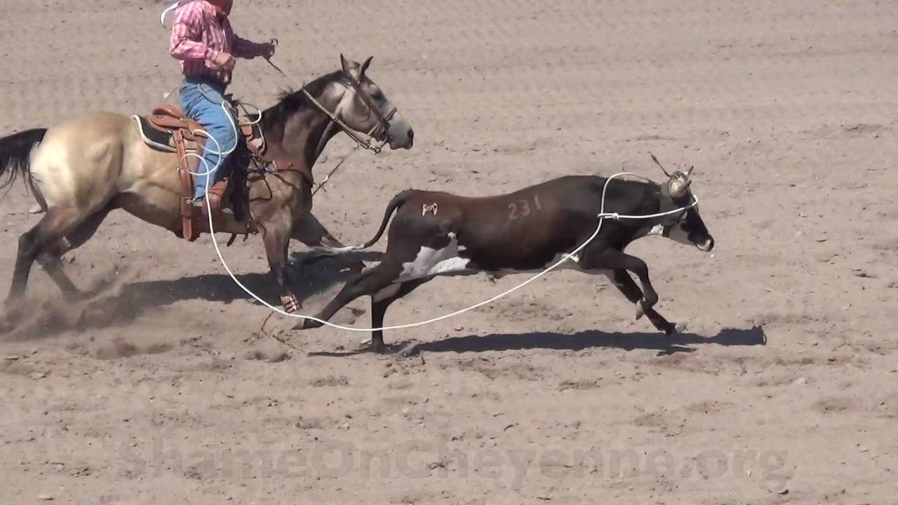 Animal Injuries At The Cruel 2016 Cfd Rodeo Youtube