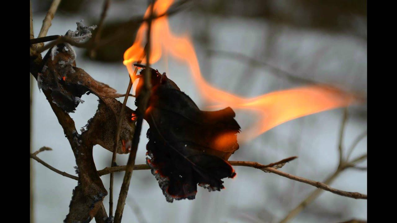 Ein Lied Von Eis Und Feuer 11