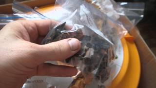 Сушеные грибы и фрукты с помощью электросушилки