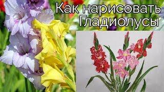 Как нарисовать Гладиолусы видео урок How to draw Gladiolus painting tutorial 글라디올러스 그림 그리기