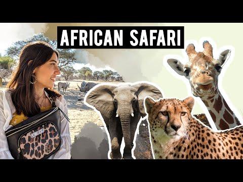African Safari Vlog EP 01 | Game Drive in Windhoek, Namibia | | What is Game Drive? Tanya Khanijow