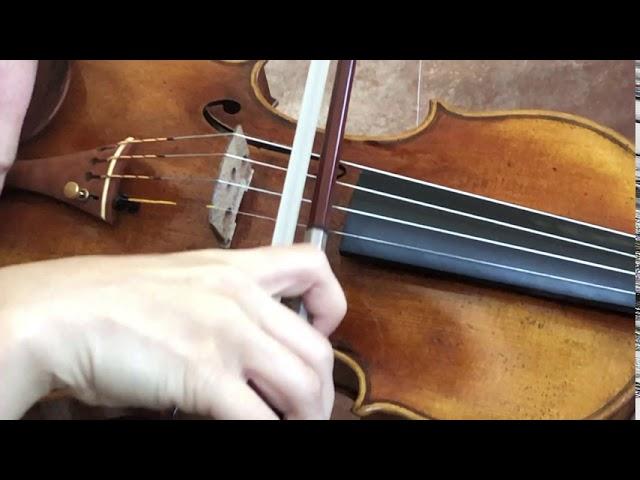 Ifstrings Master Build deluxe Wood #349 Guarneri del Gesu 1743