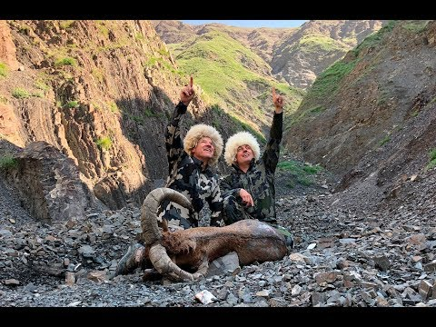 Azerbaijan hunting DAGESTAN TUR SHEKI 2018