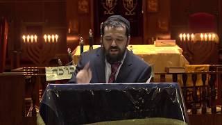Самый радостный праздник Суккот и книга Экклезиаст ( Коэлет) - Р. Бенцион Ласкин