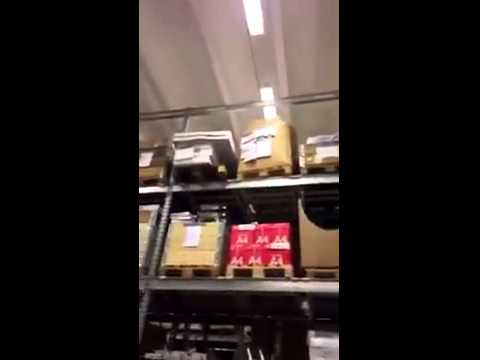 [Haiku] Screaming Duck Kick