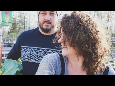 Consider the Fort Held | VLOG | Roots and Refuge
