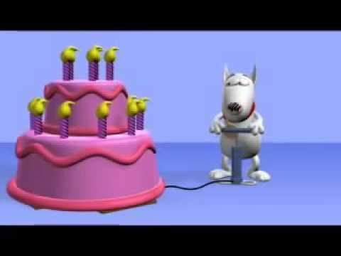 Lustiges Geburtstagsvideo: Der Hund und die Torte