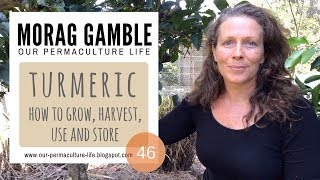 Turmeric: How to Grow, Harvest, Use and Store with Morag Gamble