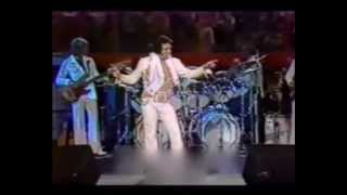 "Elvis Presley ""if you love me"" live 1977"