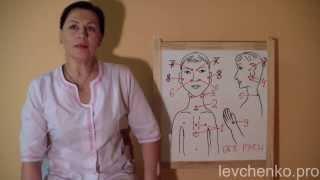 Точечный массаж для иммунитета. Маргарита Левченко.