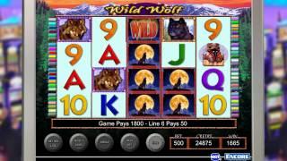 IGT - Slots Wild Wolf Gameplay