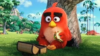 Angry Birds - Trailer #1