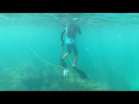 Kata Beach Phuket Thailand Free Diving Shooting Fish laeRvLog about Surfer:ADDY with friend