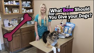 What Bones Can you Give your Dog? | DOG BONES