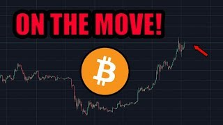 Everyone Is Trying To Get Their Last Bitcoin. A Big Move Is Coming.