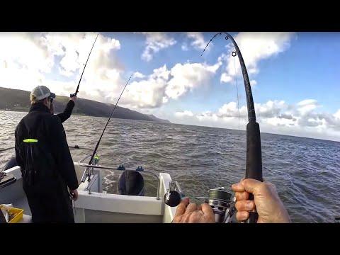 MURKY WATER SEA FISHING
