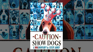 Download Video Caution Show Dogs MP3 3GP MP4