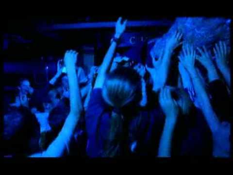 Llama Farmers - Yellow (Promo Video) (c) Beggars Banquet