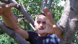Видео для друзей /Зеленая Планета / Новый канал / Подписывайтесь друзья