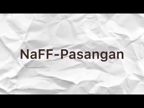 (Unofficial Lirik Video) NaFF-Pasangan