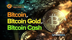 BITCOIN VS. BITCOIN CASH VS. BITCOIN GOLD (WHAT'S THE DIFFERENCE?!)
