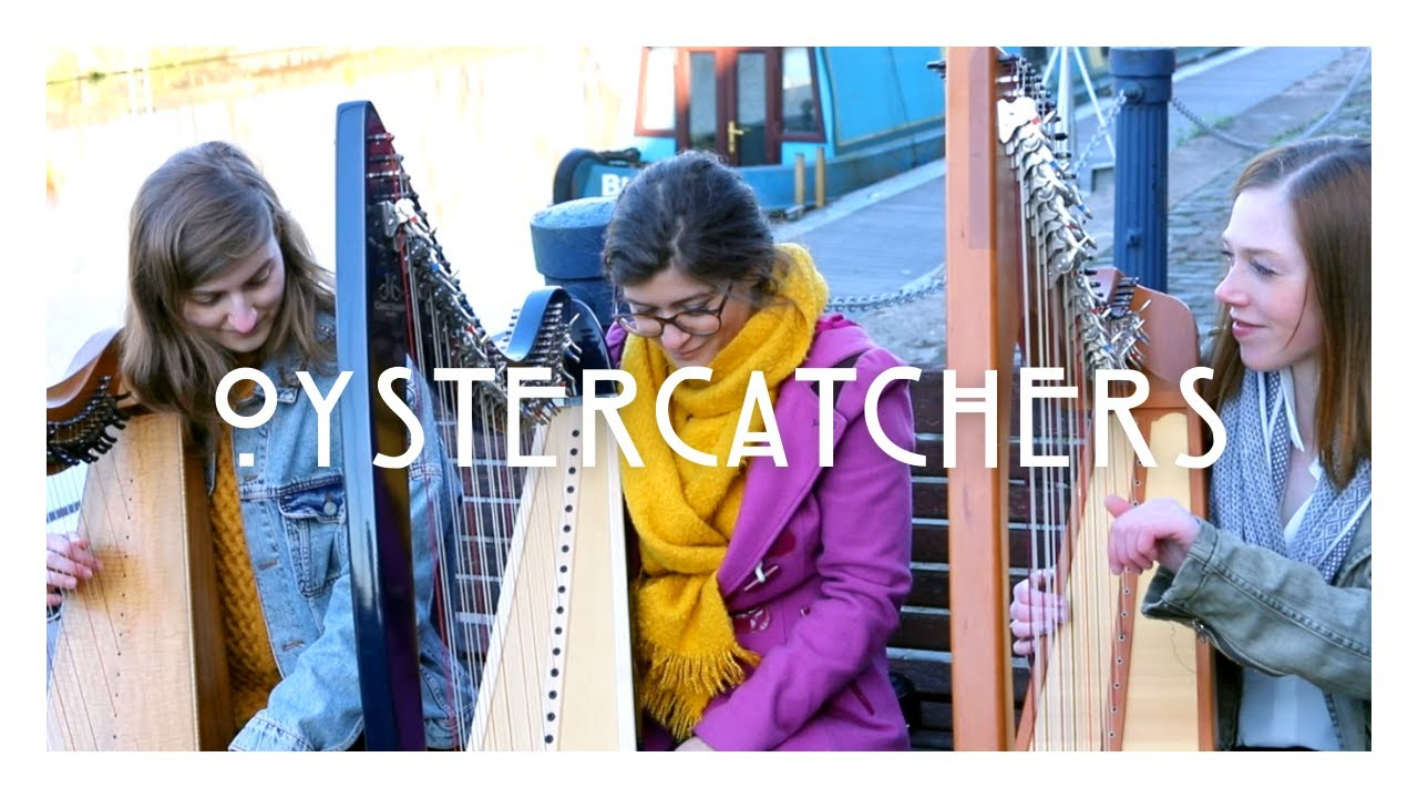 Oystercatchers - Official Music Video - The Willow Trio - by Romy Wymer - Clarsach Trio