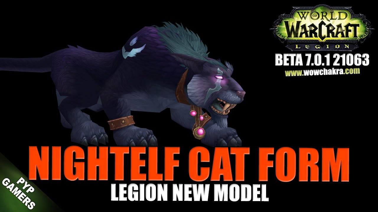 WoW] Night Elf cat form 2 new model | World of Warcraft Legion ...