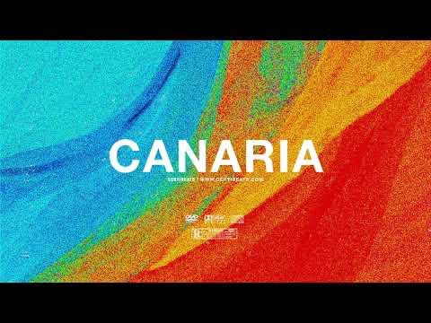 "(FREE) | ""Canaria"" | Swae Lee x French Montana Type Beat | Free Beat Dancehall Pop Instrumental 2019"