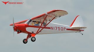 Super Cub Pa-18 Scale 1:4 Arf Ph114 Phoenixmodel