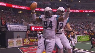 Arena Football League 2014 Playoff Preview