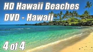 #1 WAVE SOUNDS #4 for Studying Relaxing ocean Waves lapping on Hawaii Beach Nature Scene to study