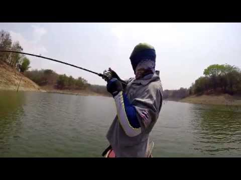 Fishing Video !!! Wild Mama Toman Chase- Awesome Big Game Fishing- BKKGUY