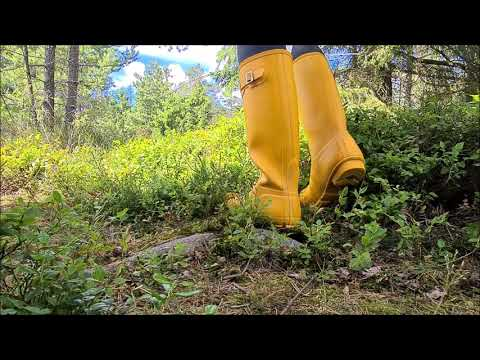 Hunter Original Tall gelb Latexanzug