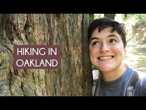 Hiking the Redwood Regional Park