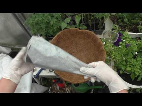 Подвесные корзины! Секрет выращивания растений в корзинах  Чтобы грунт не пересыхал!