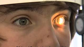 Schulfilm:Das Auge (DVD / Vorschau)