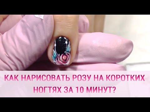 Красивый маникюр на коротких ногтях фото